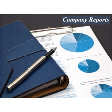 COMPANY DETAILED REPORTS